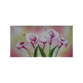 Obraz - Růžové Kaly