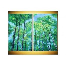 Obrazový set - Koruny stromů