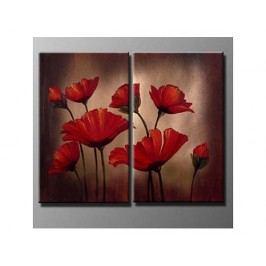 Obrazový set - Květy ve tmě