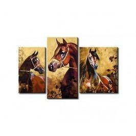 Vícedílné obrazy - Koně