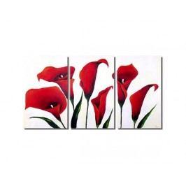 Obrazový set - Červené kaly