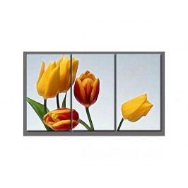 Obrazový set - Tulipány
