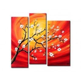 Vícedílné obrazy - Kvetoucí strom