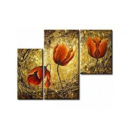 Vícedílné obrazy - Tři květy