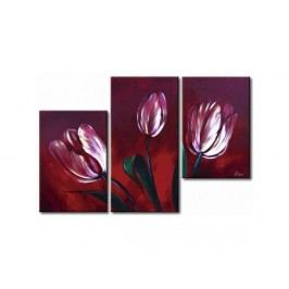 Vícedílné obrazy - Tulipány