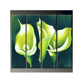 Vícedílné obrazy - Zelené kaly