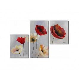 Obrazový set - Bílé a červené tulipány