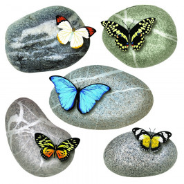 Samolepicí dekorace Butterflies on Stones, 30 x 30 cm