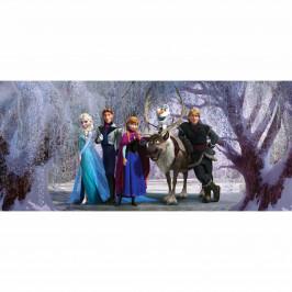 Dětská fototapeta Ledové království, 202 x 90 cm