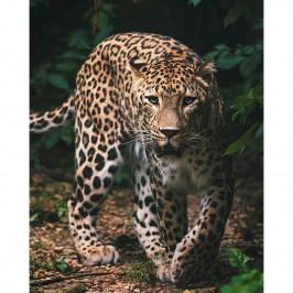 Jerry Fabrics Dětská deka Leopard green, 120 x 150 cm