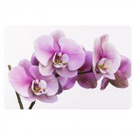 Koopman Prostírání Orchidej 43,5 x 28,5 cm, sada 4 ks