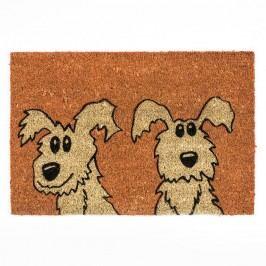 BO-MA Trading Kokosová rohožka psi, 40 x 60 cm