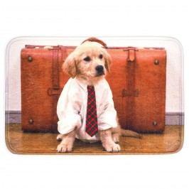 France Invendus předložka Pes s kravatou, 40 x 60 cm