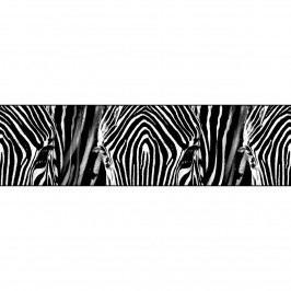 AG Art Samolepicí bordura Zebra, 500 x 14 cm
