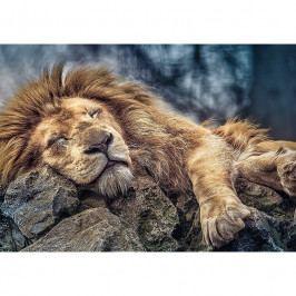 Puzzle Trefl 10447 Spící lev 1000 dílků