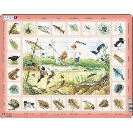 Larsen Puzzle Život u rybníka, 48 dílků