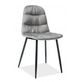 Jídelní židle Vedis (šedá)