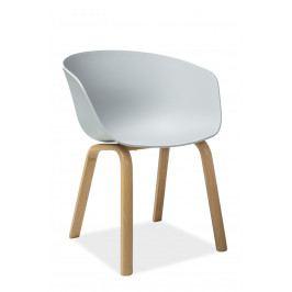 Jídelní židle Ego (světle šedá)