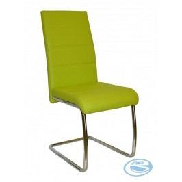 Jídelní židle Y100 zelená