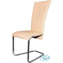 Jídelní židle H-224 lososová