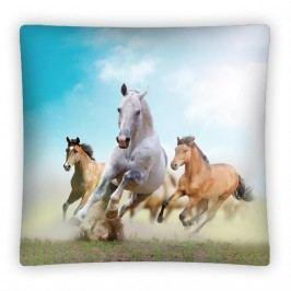 Polštářek 40x40 Horse decor