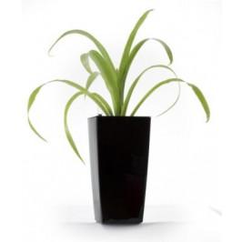 Samozavlažovací květináč Linea mini černý 26 cm