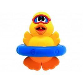 CHICCO - Kačka potápač, 6m+
