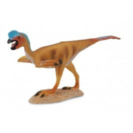 Collecte - Oviraptor