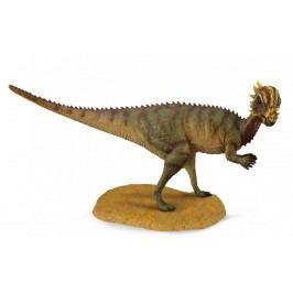 Collecte - pachycephalosaurus