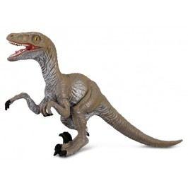 Collecte - Velociraptor