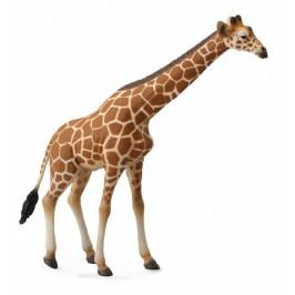 Collecte - Žirafa