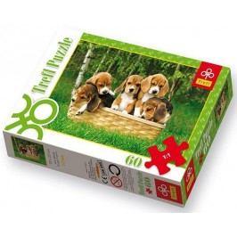 TREFL - Puzzle Pejsci 60 dílů