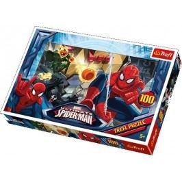 TREFL - Puzzle Spider 100 dílů