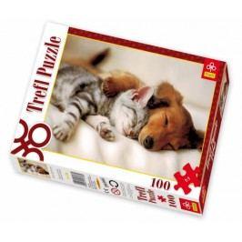 TREFL - Trefl puzzle 100 Spící kamarádi