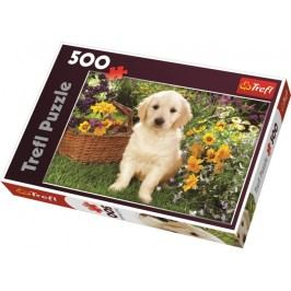 TREFL - Puzzle Labrador