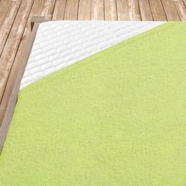 Napínací froté prostěradlo světle zelená 140x200 cm jednolůžko Froté