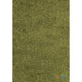 Kusový koberec DREAM SHAGGY Green - 120 x 170 cm