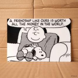 PEANUTS Prostírání Friendship