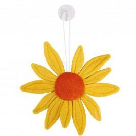 SUNNY Slunečnice