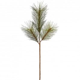 FLORISTA Větevička borovice