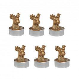 FLAMBEAU Svíčka čajová jelen 6 ks - zlatá