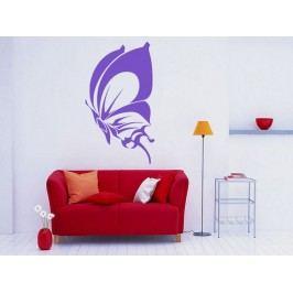 Samolepka na zeď Motýl 017
