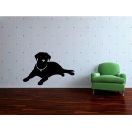 Samolepka na zeď Labrador 001