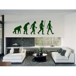 Samolepka na zeď Evoluce 001