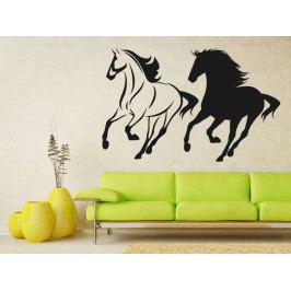 Samolepka na zeď Dva koně 0330