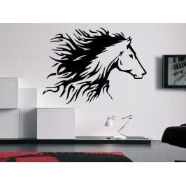 Samolepka na zeď Kůň 0340