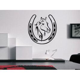 Samolepka na zeď Kůň 0358