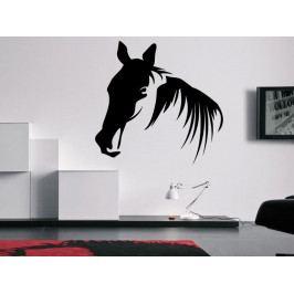 Samolepka na zeď Kůň 0362