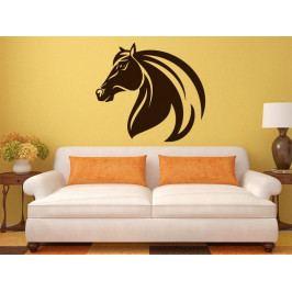 Samolepka na zeď Kůň 0365