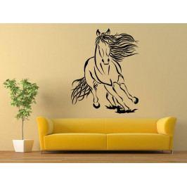 Samolepka na zeď Kůň 0401